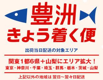 20%割引クーポン&送料無料「がんばろう!静岡キャンペーン」