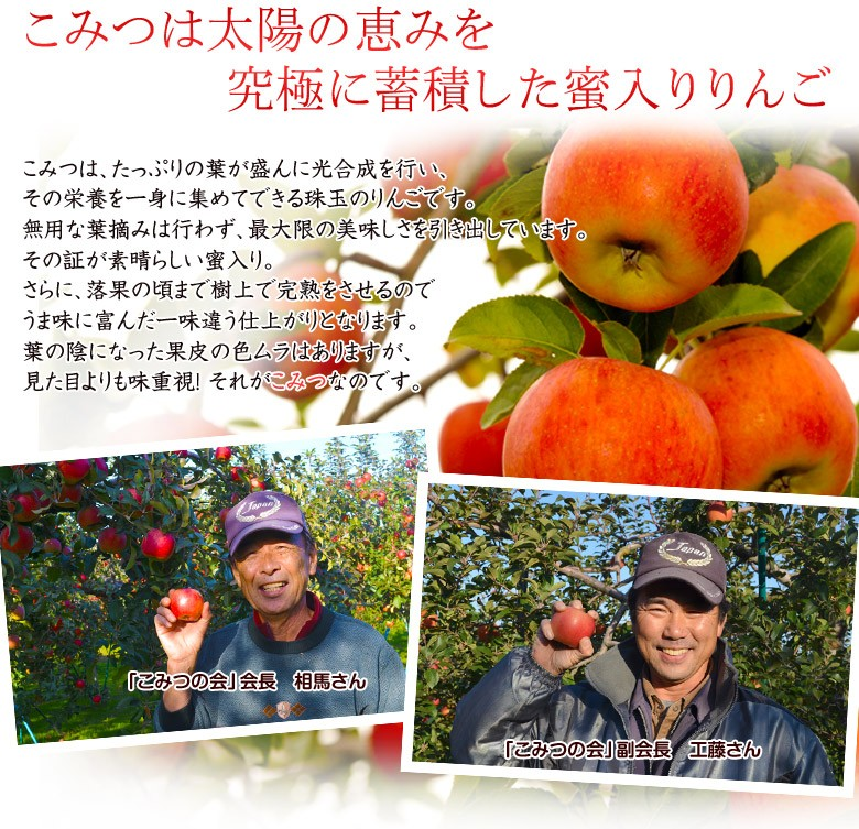 蜜入りりんごこみつ