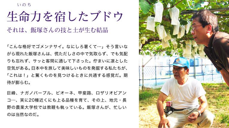生命力を宿したブドウ それは、飯塚さんの技と土が生む結晶