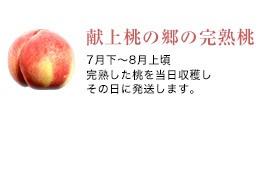 献上桃の郷の完熟桃