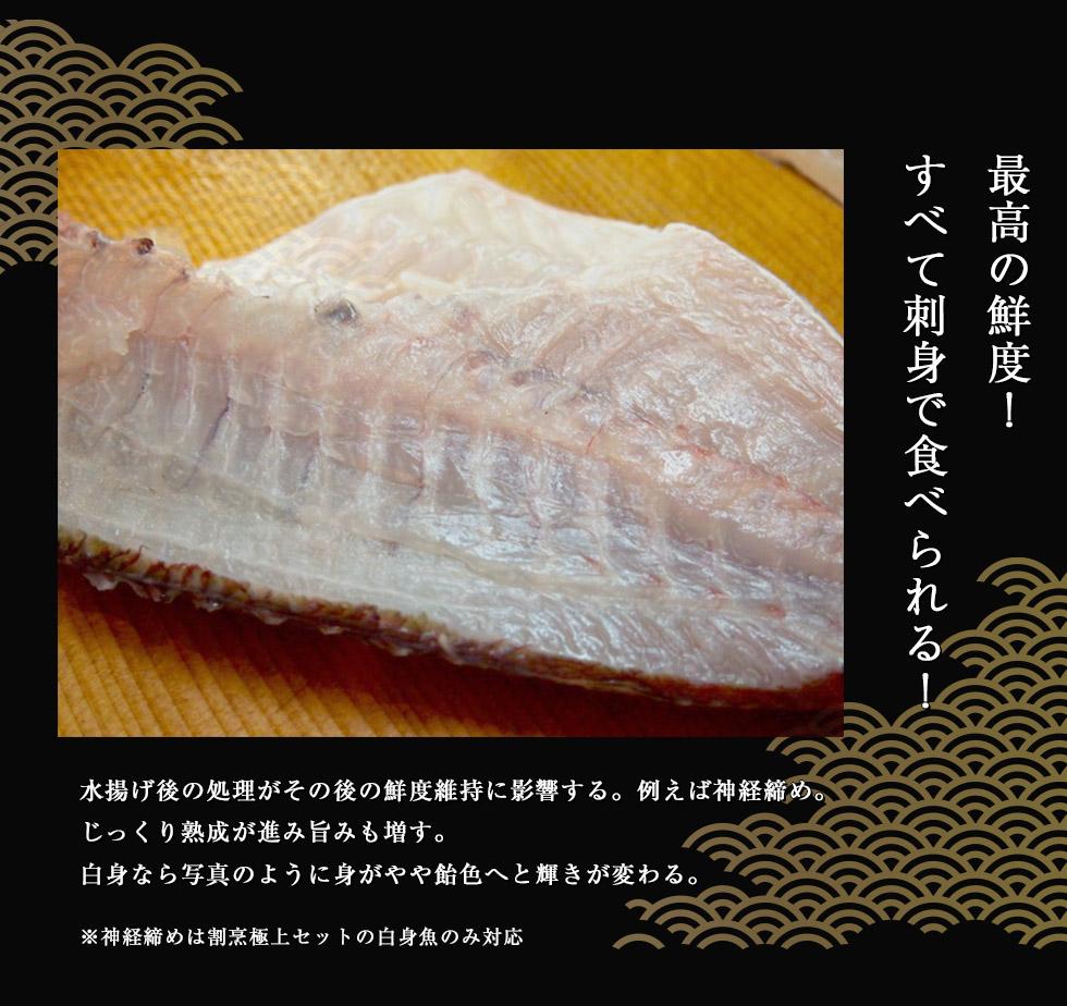 鮮魚 ボックス 通販
