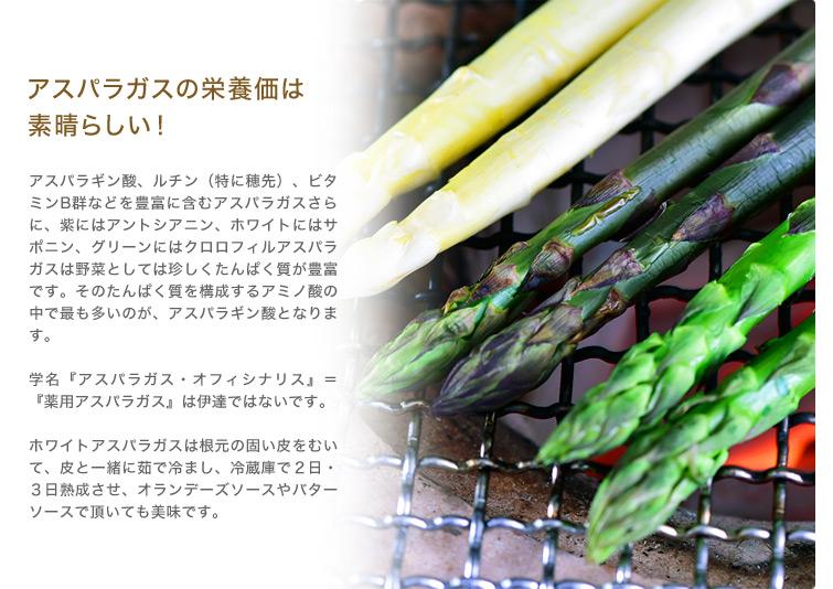 アスパラガスの栄養価は素晴らしい! アスパラギン酸、ルチン(特に穂先)、ビタミンB群などを豊富に含むアスパラガスさらに、紫にはアントシアニン、ホワイトにはサポニン、グリーンにはクロロフィルアスパラガスは野菜としては珍しくたんぱく質が豊富です。そのたんぱく質を構成するアミノ酸の中で最も多いのが、アスパラギン酸となります。学名『アスパラガス・オフィシナリス』=『薬用アスパラガス』は伊達ではないです。ホワイトアスパラガスは根元の固い皮をむいて、皮と一緒に茹で冷まし、冷蔵庫で2日・3日熟成させ、オランデーズソースやバターソースで頂いても美味です。