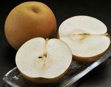 栃木県産 JAうつのみや『きらり梨』約5kg (6~12玉)※常温または冷蔵