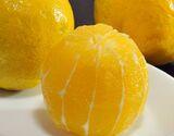 『レモネード』 静岡県産 2S〜2Lサイズ 約1.2kg