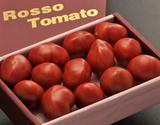 形状不揃い『ロッソトマト』愛知県産 2S〜2Lサイズ 約1.2kg