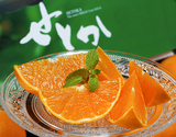『せとか』佐賀県産柑橘 M〜Lサイズ 約2.5kg(12〜18玉)化粧箱 ※常温