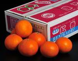 『紅香(べにかおり)』長崎県産柑橘 小玉 約3kg(15〜21玉) ※常温
