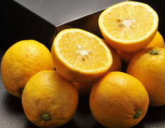 甘いレモン レモネード
