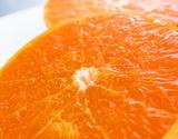 越冬完熟 『清見オレンジ(訳あり)』 愛媛県三崎産柑橘 M〜2Lサイズ 約5kg(風袋込み)※常温