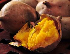 安納紅芋 鹿児島県種子島産さつまいも