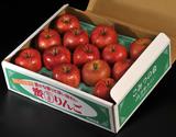 訳アリ『超小玉こみつ(品種:こうとく)』青森県産りんご 約1.8kg(13玉)