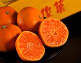 橋爪俊典さんたちの『俊菓みかん(ゆら早生)』 和歌山県産 2S〜Sサイズ 約2.5kg