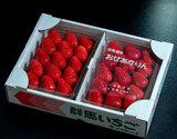 JA利根沼田『おぜあかりん』群馬県産いちご  約800g(8〜15粒×2パック) ※冷蔵
