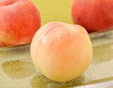 『伊達の桃』福島県産 特秀品 約1.5kg(5〜10玉)×2箱 ※常温
