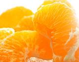 『訳あり はるみ』愛媛県三崎産 柑橘 約5kg(キズ・スレ)L〜3Lサイズ 産地箱 JA西宇和 ※常温