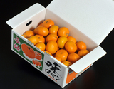 『味ロマン』多少のキズ有 JA長崎せいひ 長崎県産みかん 2S〜Mサイズ 約2.5kg