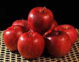 百年の樹齢を重ねる『昔ながらの紅玉』青森県産りんご 2.5kg(12〜20玉)