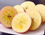 糖度13.5度以上『蜜蜜サンふじ』青森県産 岩木山りんご生産出荷組合 約2.7kg(目安として7〜13玉)