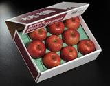 糖度15度以上『スペシャルランク サンふじ』青森県産りんご 約3kg(7〜13玉)岩木山りんご生産出荷組合