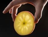 『ちょっと訳ありこみつ』 青森県産 りんご 6〜12玉 約2kg 秀A品 ムラ・小さな傷あり ※常温