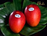 宮崎産完熟マンゴー『時の雫《極み》』 2Lサイズ 350g〜449g×2玉 化粧箱入
