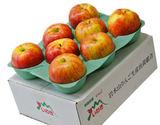 岩木山りんご生産出荷組合『葉取らずサンつがる』青森県産 正規品 (目安として7〜15玉)計約3kg ※冷蔵
