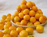 【朝日マリオン】『早和果樹園の小玉みかん』 和歌山産 S〜3Sサイズ 約5kg