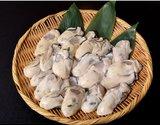 『巨大むき牡蠣』 広島産 3Lサイズ 加熱用 約1kg(解凍後 約850g) ※冷凍