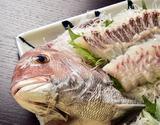 来島海峡の真鯛  小(全長28〜30cm前後) ※冷蔵