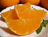『訳あり甘平(かんぺい)』愛媛県産 柑橘 L〜4Lサイズ 風袋込み約2.5kg 簡易包装 ※常温