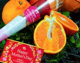 《母の日ギフト》『デコポン』熊本県産柑橘 約2kg(風袋込) 7〜9玉 化粧箱 カーネーション(造花)+メッセージカード ※常温