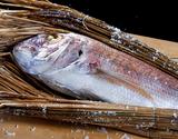 讃岐名産「真鯛の濱焼き(養殖)」香川県産 8人前(1.7〜1.8kg) ※冷蔵