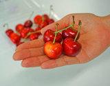 山梨県産 露地栽培 紅秀峰 (特秀) 3Lサイズ 約200g×2p 4セットまで送料一口 冷蔵