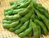 『くろさき茶豆』新潟県産 約250g×3袋 (合計約750g)※冷蔵