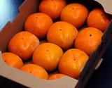 【2箱同時購入で1箱オマケ】『たねなし柿(刀根柿または平種なし柿)』和歌山県産 ちょっと傷あり 1箱 約2kg