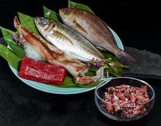 豊洲割烹便・鮮魚ボックス