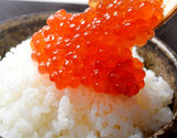 【朝日マリオン】『いくら醤油漬け』 ロシア産鱒子使用 青森加工 1パック 大盛 500g 冷凍