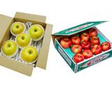 『究極の蜜入りりんごセット』青森県産 こみつ 約2kg(6〜12玉)&こうこう 約2kg(5〜8玉) ※常温