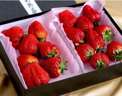 果汁溢れるみずみずしさ、優しい甘みが特徴1万5千株の中から選び抜かれた登録されたばかりの新品種