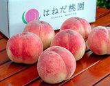 『羽根田さんの完熟桃(なつっこ or まどか)』約2kg(6〜7玉)糖度14度以上 福島県桑折町産