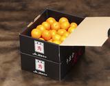 JAからつ 『うまか美人』 佐賀県産みかん 約2.5kg×2箱 小玉 2S〜3Sサイズ ※常温