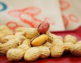 新品種「Qなっつ(キューナッツ)」 千葉県八街産 焙煎 100g×2袋 落花生 ピーナッツ【令和元年 新豆】 ※メール便