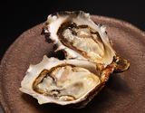 北海道厚岸産 生食用牡蠣 カキえもん Lサイズ12個(殻付き) ※冷蔵