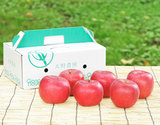大野農園『完熟サンふじ』約2kg(6玉)福島県石川町産りんご 化粧箱