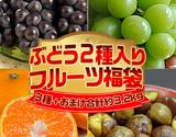 『ぶどう福袋』4種 計約3.2kg(シャインマスカット1房・味ロマン2.5kg・スチューベン2房・むき甘栗1袋)