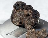 『フレッシュ黒トリュフ』中国ヒマラヤ産 計50g前後(2〜3個) ※冷蔵