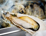 三陸産牡蠣カンカン焼き 1.5kg(15個前後) ※冷凍