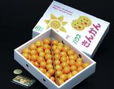 ステビア栽培『金柑』 鹿児島県産 超大粒 3L〜4Lサイズ 約2kg ※常温