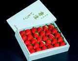 『いちごさん』佐賀県産イチゴ 約800g(30粒)木箱入り ※冷蔵