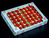 『ミガキイチゴ』宮城県産 プロ 約300g(20〜24粒)×2 約600g  ※冷蔵